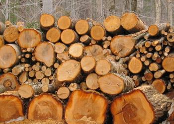 Devis chaudière bois – granulés