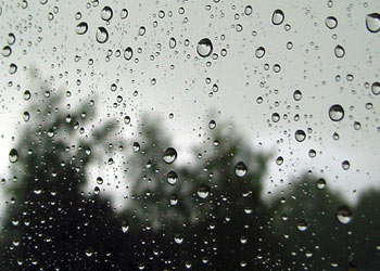 Devis récupération des eaux de pluie